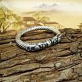 17年新作,欢迎大家种草欣赏四连环戒指双龙戏珠