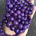 紫龙晶新宠