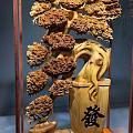 太行山崖柏陈化老料发财树摆件、全缕空打造,高油性浓郁奶香味