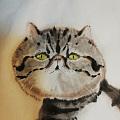 第一次画猫