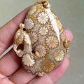 纯天然印尼珊瑚玉