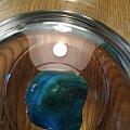 (药房?偷闲物语)松石入水冒泡儿,谁还没吃过几次药💊呢。好奇&抽空去送检