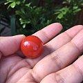 南红大圆珠,求好的镶嵌方案