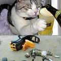 朋友Line的照片,喝酒不開車