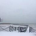 家乡的雪!几年难见!