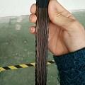 老棕竹折扇配上黑洒金扇面,太有魅力了!