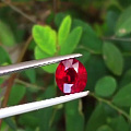 看中一枚红宝石 想镶成求婚戒 求大神鉴定