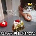 毛孩子過生日