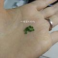 冰种阳绿翡翠小裸石
