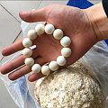 阿拉善蛋白石又名象牙白