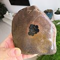 这个算奇石吗?