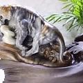 【玉石界的大老虎——虎皮籽】切一刀看看....