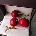 樱桃熟了~