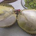 坛红榴莲做个榴莲酥
