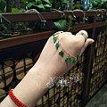 带着很美的辣绿手链去见一个朋友,然后吃火锅!