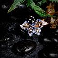 你若盛开,蝴蝶自来;你若精彩,天自安排。