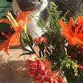今天的弟弟觉得花也挺好看