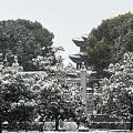 雪中的龙王庙