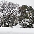 雪中的晴川阁