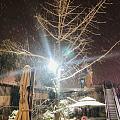 杭州下大雪啦!