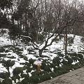 你在海南的艳阳里露着腰,我在扬州的雪花里裹着貂......         ...