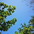 蜈支洲岛,美景无限