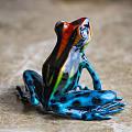 材质竞猜答案:::铜铸造的雨林蛙和大猩猩