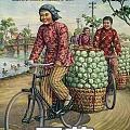 中国女子购物图鉴,我几乎全中