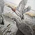 《野鸭纷飞》,金属蚀刻画