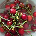 第二张照片让我联想到南红的樱桃红,实在太好看了