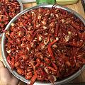 过节,70斤小龙虾共享