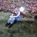 2003年我哥送我一支高冰飘花带黄翡贵妃镯(王泠仙)同年四姨妈送我一只蝴蝶犬...