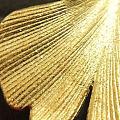 微距下的金子
