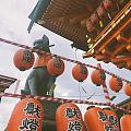 参加了一回京都的祭り。穿着浴衣,拜神许愿、捞金鱼、吃小吃、围在一起跳舞。专属...