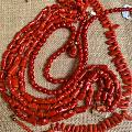 阿卡牛血紅珊瑚顏色真好看.