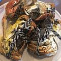 又到了吃大闸蟹的季节