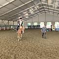 今天开始学习骑马了