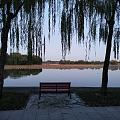 颐和园的傍晚 5点,天就要黑了,走走溜达一圈西门进,南如意门出,3000步。...