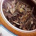 十年老白茶
