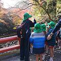 日本的小孩腿真不怕冷