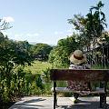 life in Chiengmai