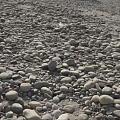 籽料挖掘现场