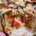 一只螃蟹一顿饭……