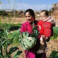 天气晴朗,整个人都很惬意~宝宝 和她奶奶出来摘菜好开心(●°u°●)」(...