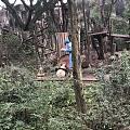 熊猫宝宝萌萌哒₍ᐢ •⌄• ᐢ₎