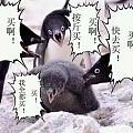 万能的坛友,关于苏州姑苏区韵达快递问题!