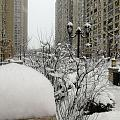 今天下雪了
