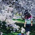 春天在哪里呀?