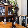 我有美丽的花瓶