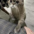 妈妈,妈妈,我馋我饿,我要吃零食。。